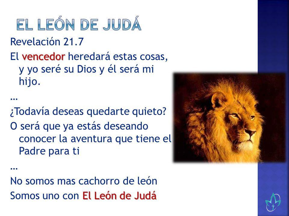 Revelación 21.7 vencedor El vencedor heredará estas cosas, y yo seré su Dios y él será mi hijo. … ¿Todavía deseas quedarte quieto? O será que ya estás