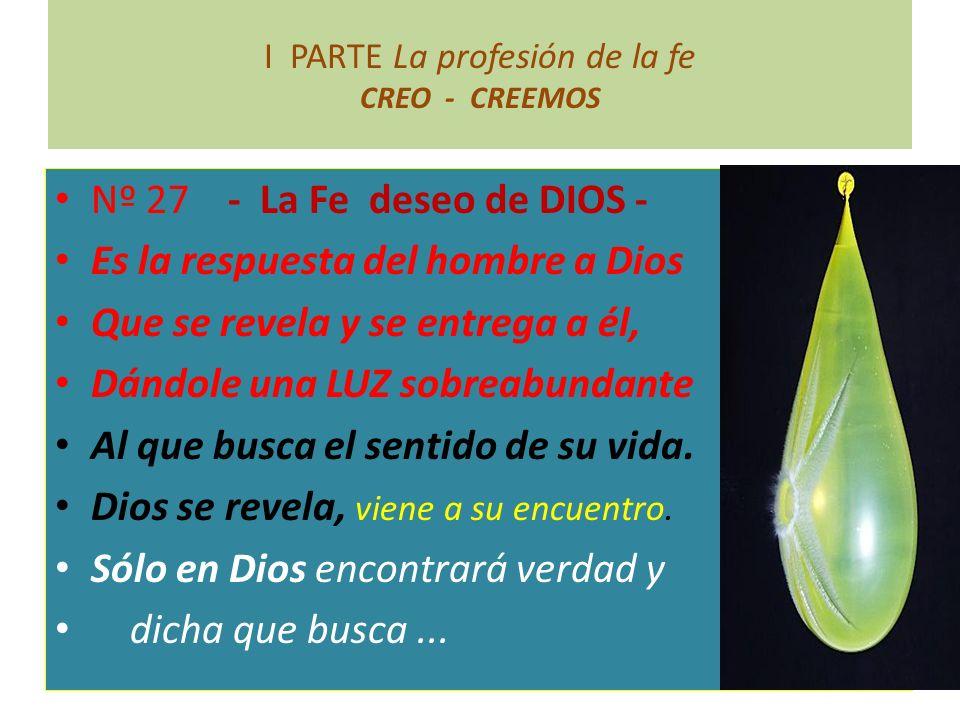 I PARTE La profesión de la fe CREO - CREEMOS Nº 27 - La Fe deseo de DIOS - Es la respuesta del hombre a Dios Que se revela y se entrega a él, Dándole
