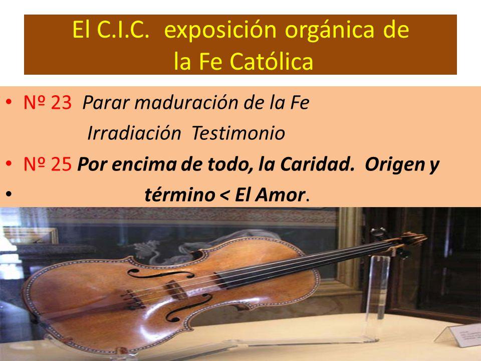El C.I.C. exposición orgánica de la Fe Católica Nº 23 Parar maduración de la Fe Irradiación Testimonio Nº 25 Por encima de todo, la Caridad. Origen y