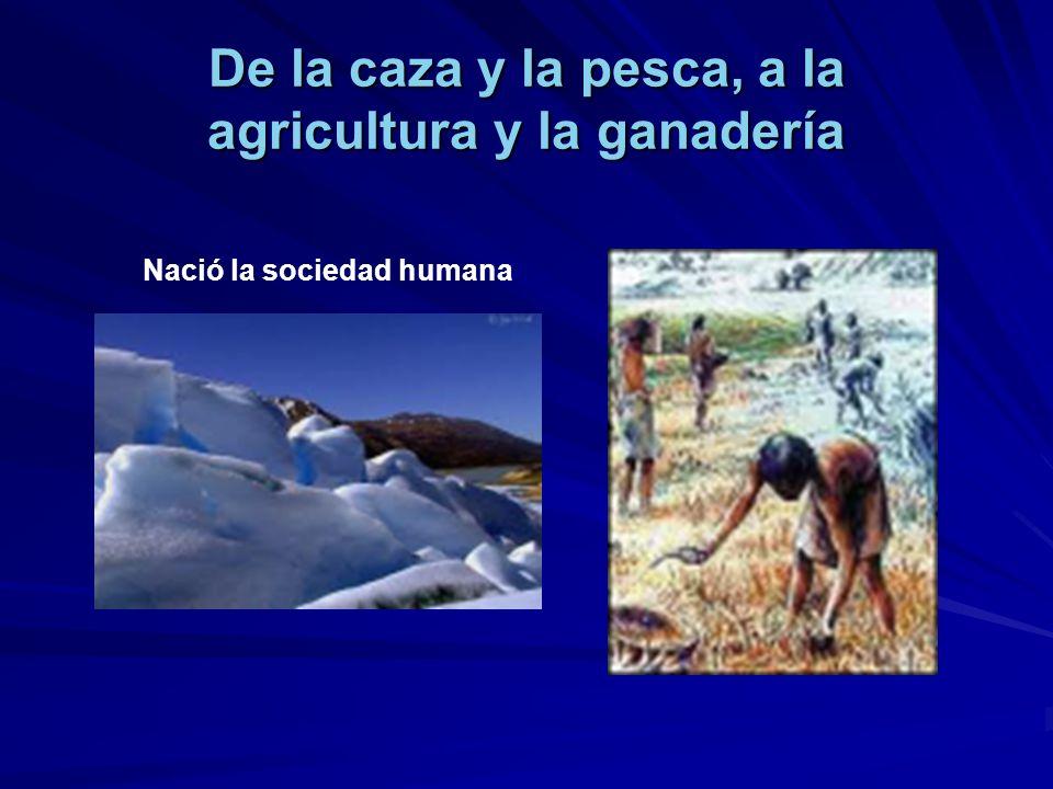 De la caza y la pesca, a la agricultura y la ganadería Nació la sociedad humana