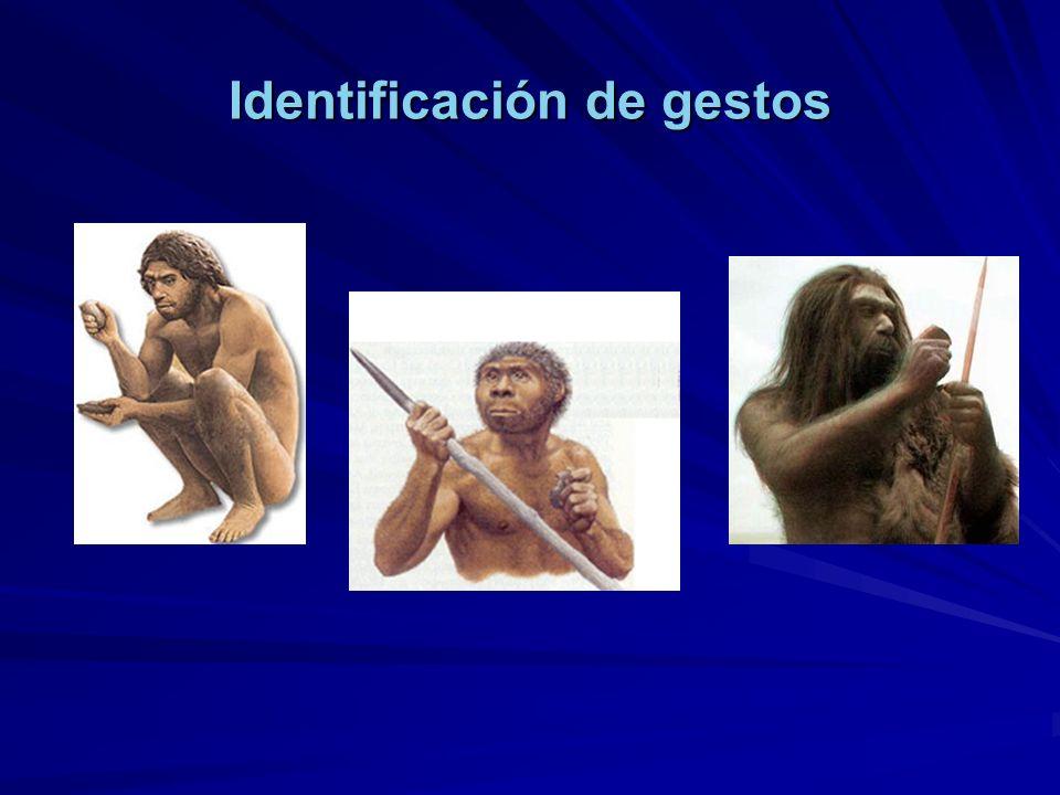 Identificación de gestos