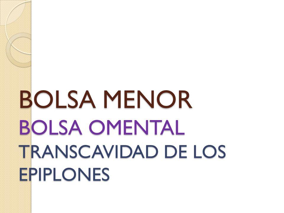BOLSA MENOR BOLSA OMENTAL TRANSCAVIDAD DE LOS EPIPLONES