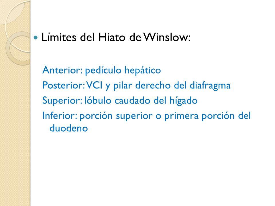 Límites del Hiato de Winslow: Anterior: pedículo hepático Posterior: VCI y pilar derecho del diafragma Superior: lóbulo caudado del hígado Inferior: porción superior o primera porción del duodenoy conducto biliar