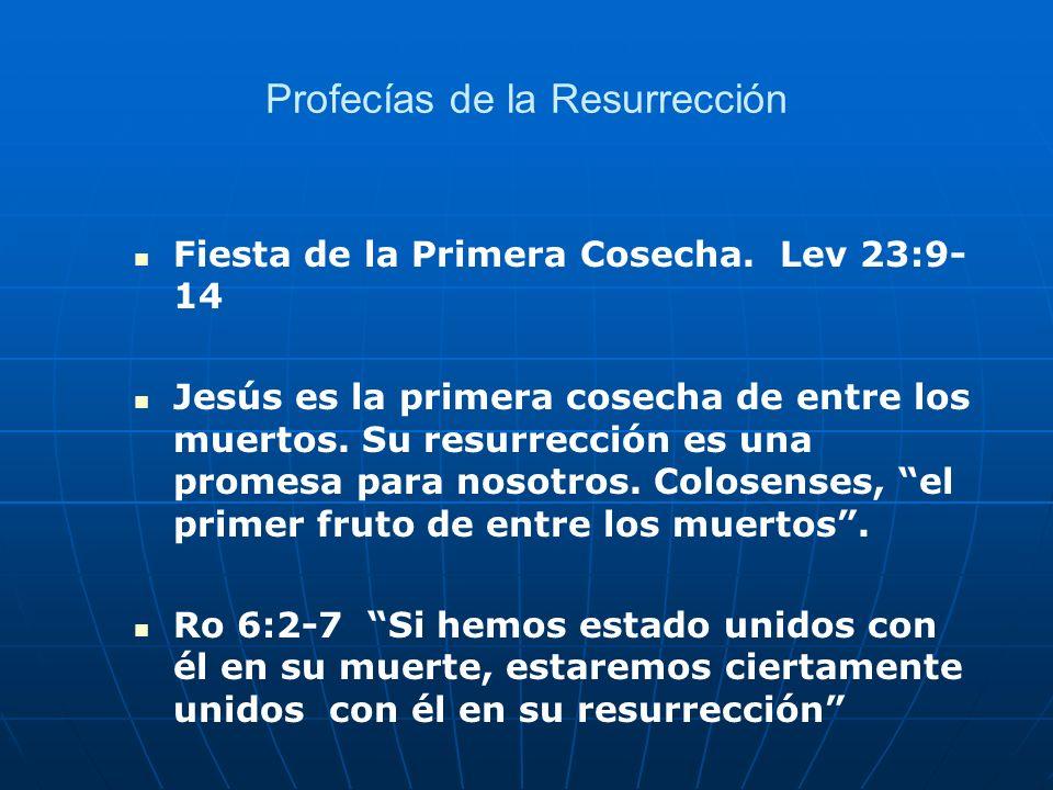 Profecías de la Resurrección Fiesta de la Primera Cosecha. Lev 23:9- 14 Jesús es la primera cosecha de entre los muertos. Su resurrección es una prome