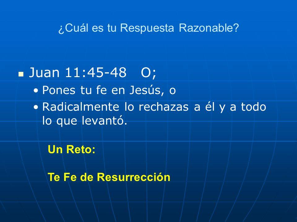 ¿Cuál es tu Respuesta Razonable? Juan 11:45-48 O; Pones tu fe en Jesús, o Radicalmente lo rechazas a él y a todo lo que levantó. Un Reto: Te Fe de Res