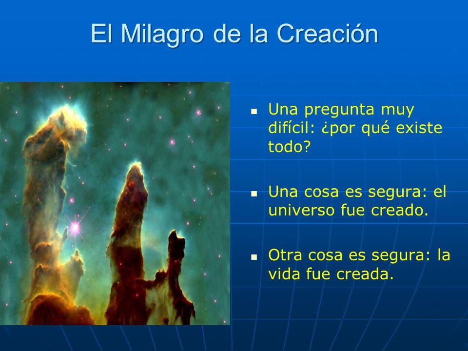 El Milagro de la Creación Una pregunta muy difícil: ¿por qué existe todo? Una cosa es segura: el universo fue creado. Otra cosa es segura: la vida fue