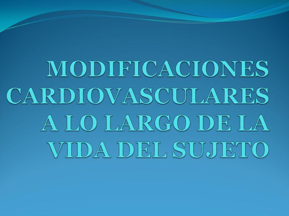 ÍNDICE MODIFICACIONES CARDIOVASCULARES DURANTE LA ETAPA FETAL Y CAMBIOS AL NACER MODIFICACIONES CARDIOVASCULARES DURANTE LA NIÑEZ.