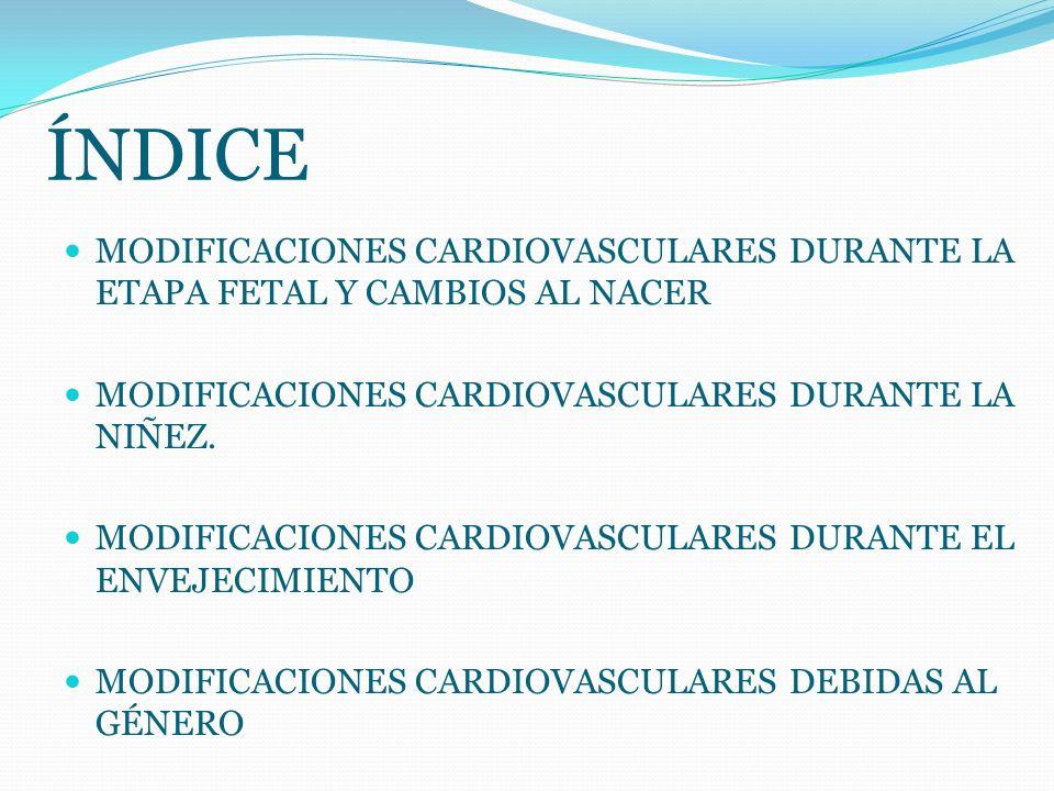 ÍNDICE MODIFICACIONES CARDIOVASCULARES DURANTE LA ETAPA FETAL Y CAMBIOS AL NACER MODIFICACIONES CARDIOVASCULARES DURANTE LA NIÑEZ. MODIFICACIONES CARD