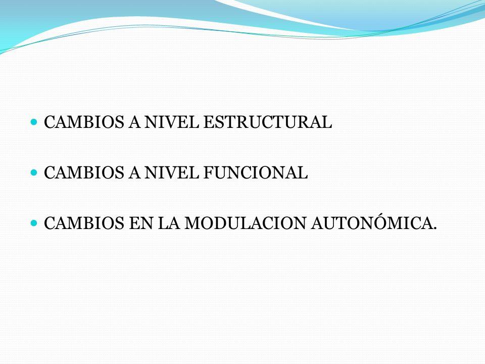CAMBIOS A NIVEL ESTRUCTURAL CAMBIOS A NIVEL FUNCIONAL CAMBIOS EN LA MODULACION AUTONÓMICA.