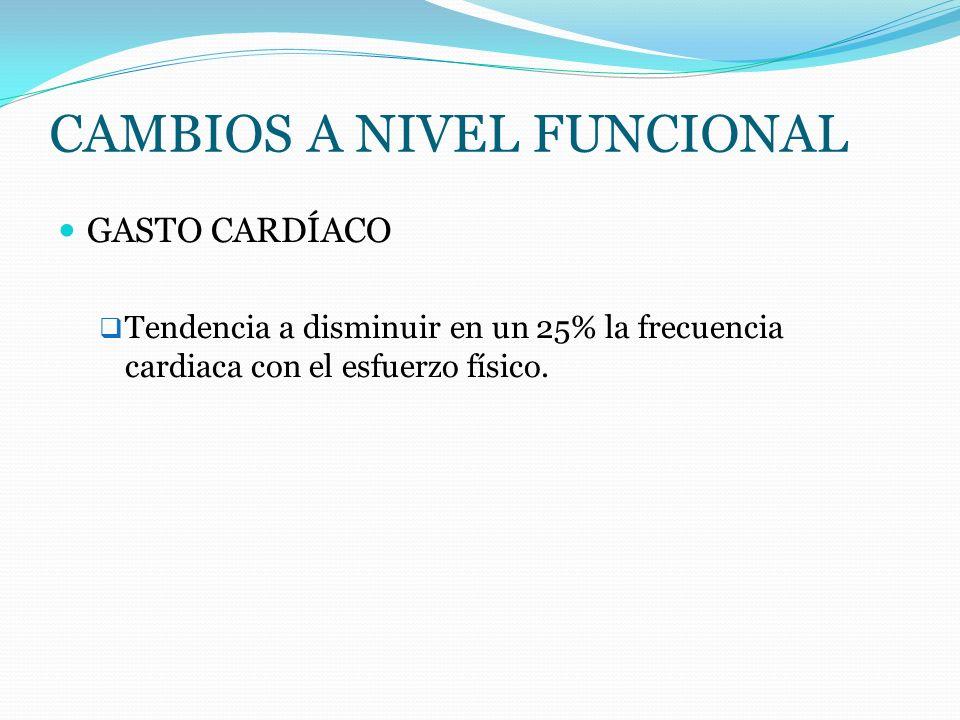 CAMBIOS A NIVEL FUNCIONAL GASTO CARDÍACO Tendencia a disminuir en un 25% la frecuencia cardiaca con el esfuerzo físico.