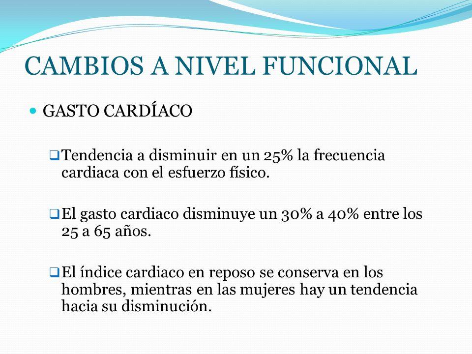 CAMBIOS A NIVEL FUNCIONAL GASTO CARDÍACO Tendencia a disminuir en un 25% la frecuencia cardiaca con el esfuerzo físico. El gasto cardiaco disminuye un