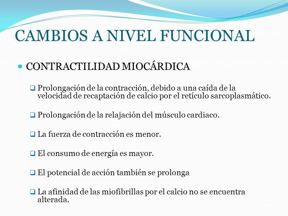 CAMBIOS A NIVEL FUNCIONAL CONTRACTILIDAD MIOCÁRDICA Prolongación de la contracción, debido a una caída de la velocidad de recaptación de calcio por el