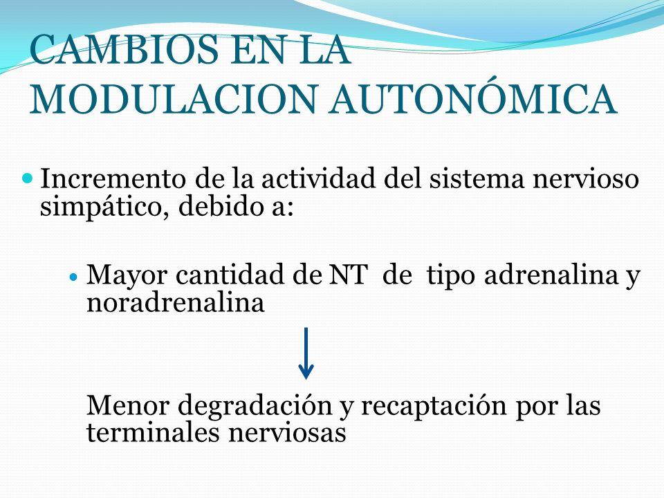 CAMBIOS EN LA MODULACION AUTONÓMICA Incremento de la actividad del sistema nervioso simpático, debido a: Mayor cantidad de NT de tipo adrenalina y nor