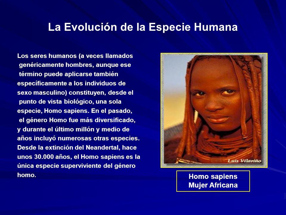 La Evolución de la Especie Humana Los seres humanos (a veces llamados genéricamente hombres, aunque ese término puede aplicarse también específicamente a los individuos de sexo masculino) constituyen, desde el punto de vista biológico, una sola especie, Homo sapiens.