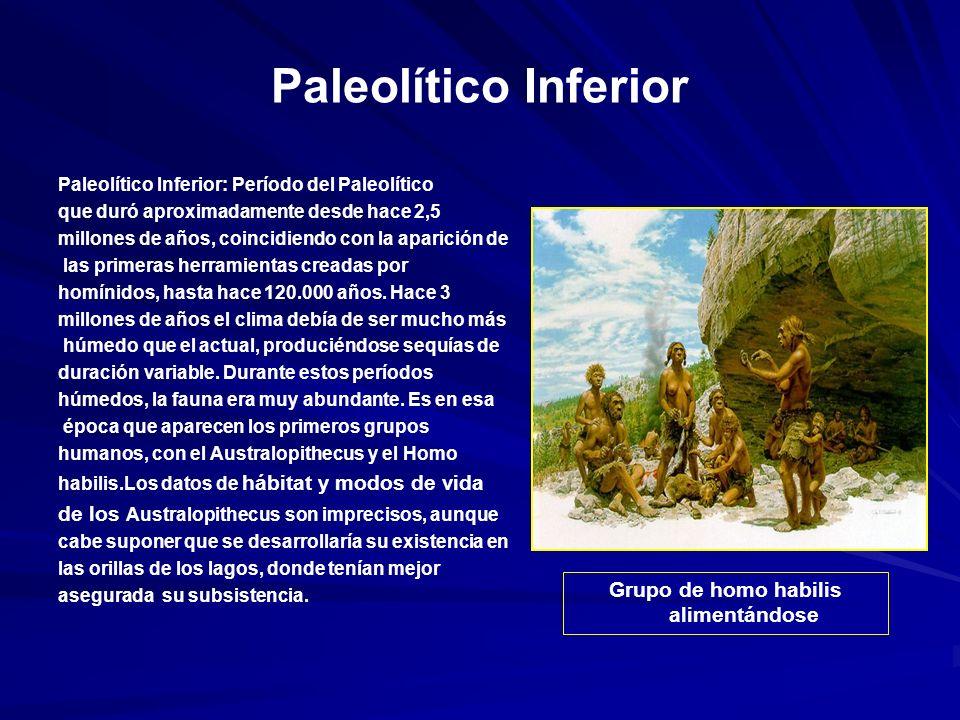 Paleolítico Inferior Paleolítico Inferior: Período del Paleolítico que duró aproximadamente desde hace 2,5 millones de años, coincidiendo con la aparición de las primeras herramientas creadas por homínidos, hasta hace 120.000 años.
