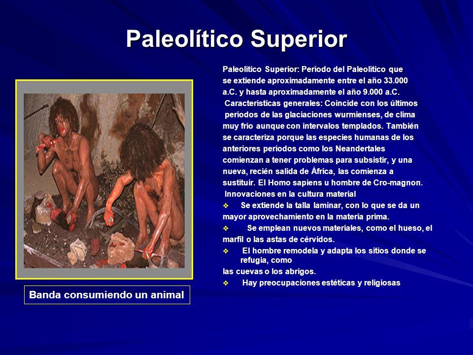 Paleolítico Superior Paleolítico Superior: Período del Paleolítico que se extiende aproximadamente entre el año 33.000 a.C.