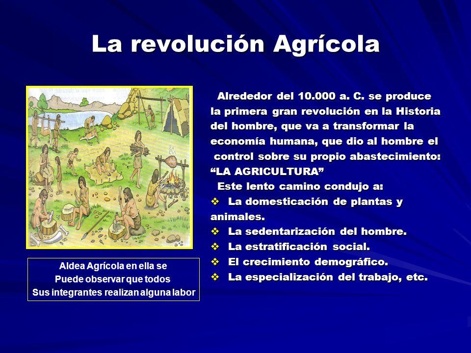 La revolución Agrícola Alrededor del 10.000 a.C. se produce Alrededor del 10.000 a.