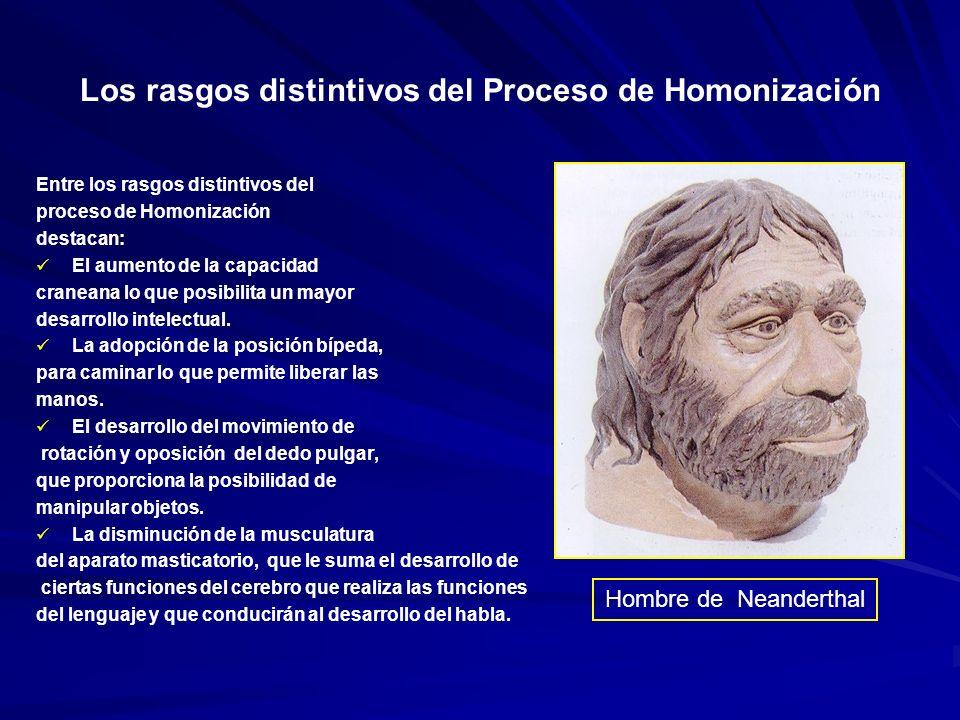 La Evolución de la Especie Humana Autralopithecus apareció hace más de 4 Autralopithecus apareció hace más de 4 millones de años.