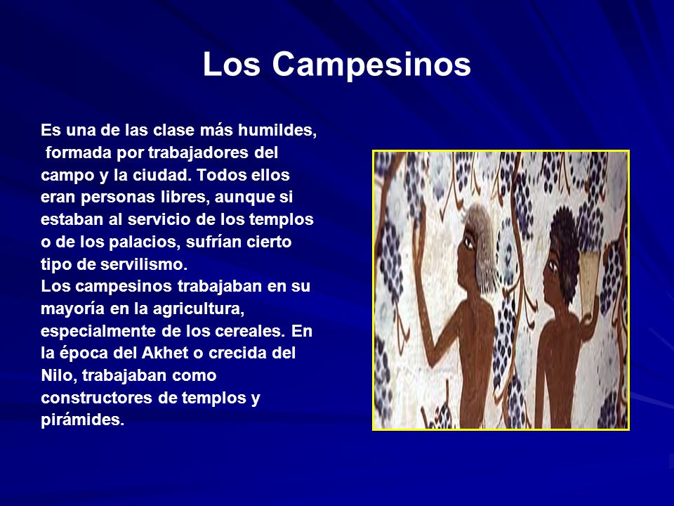 Los Campesinos Es una de las clase más humildes, formada por trabajadores del campo y la ciudad.