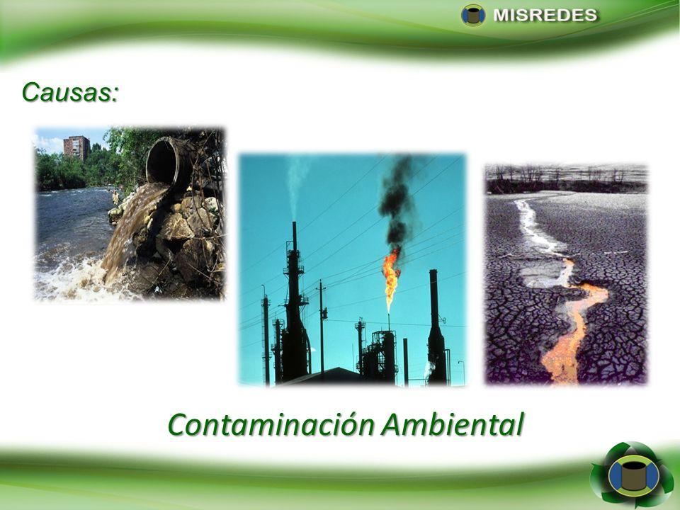 Contaminación Ambiental Causas: