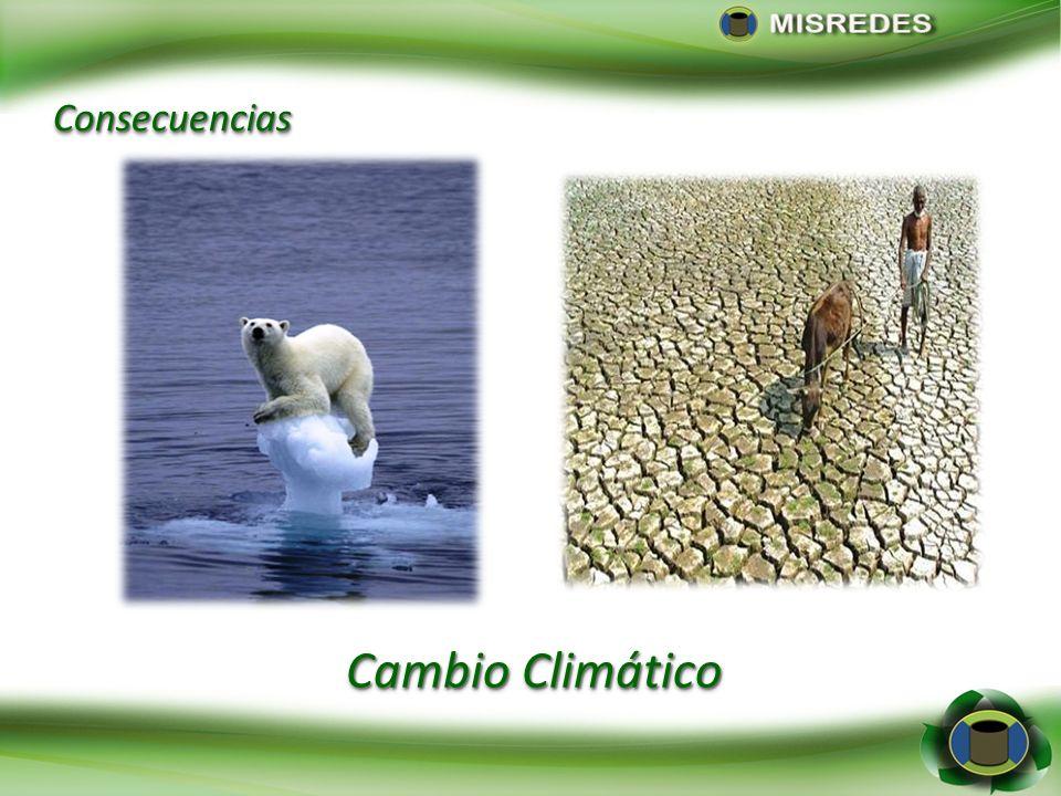 Cambio Climático ConsecuenciasConsecuencias