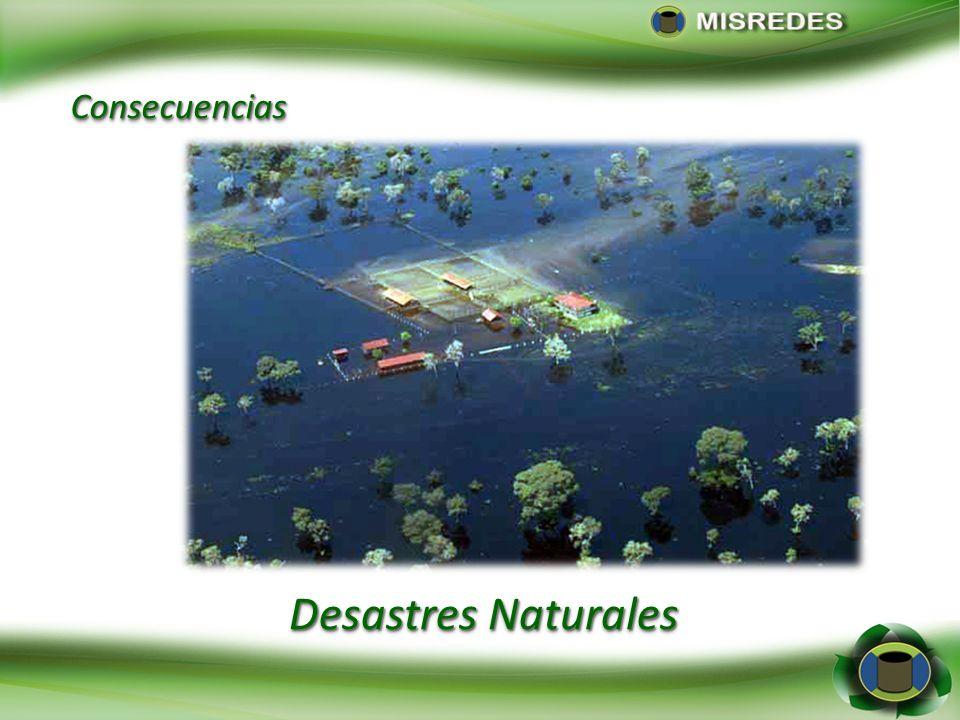 Desastres Naturales ConsecuenciasConsecuencias