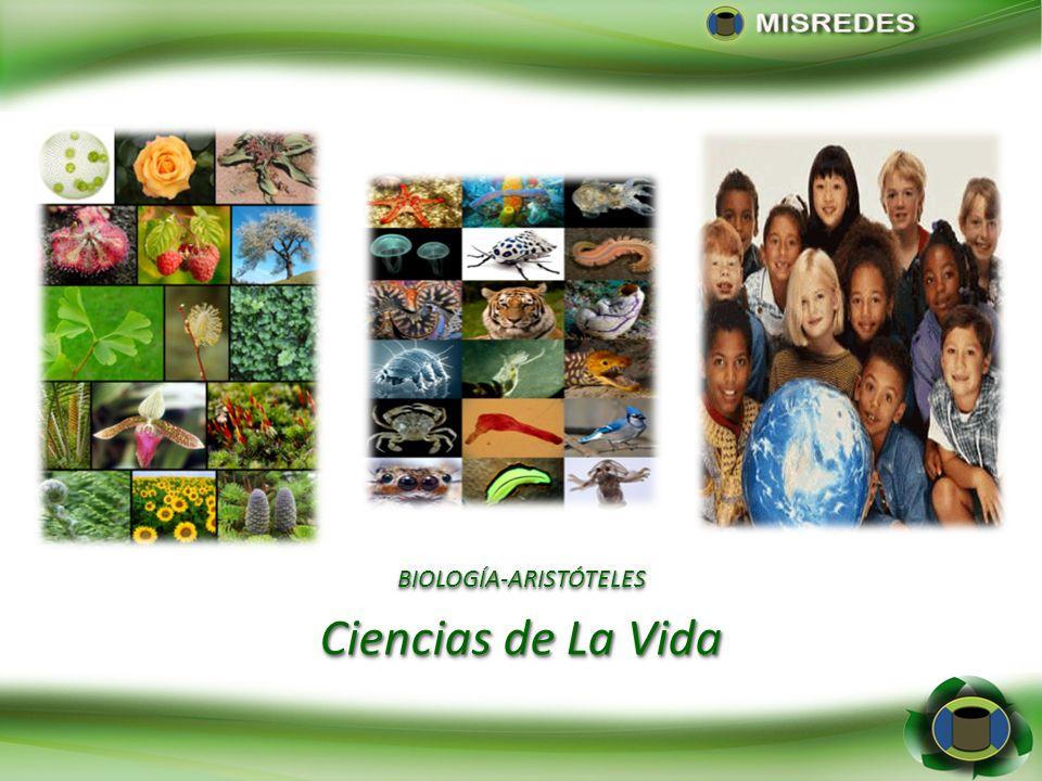 Sección I.Dimensiones Sociales y Económicas (1-8) Sección II.