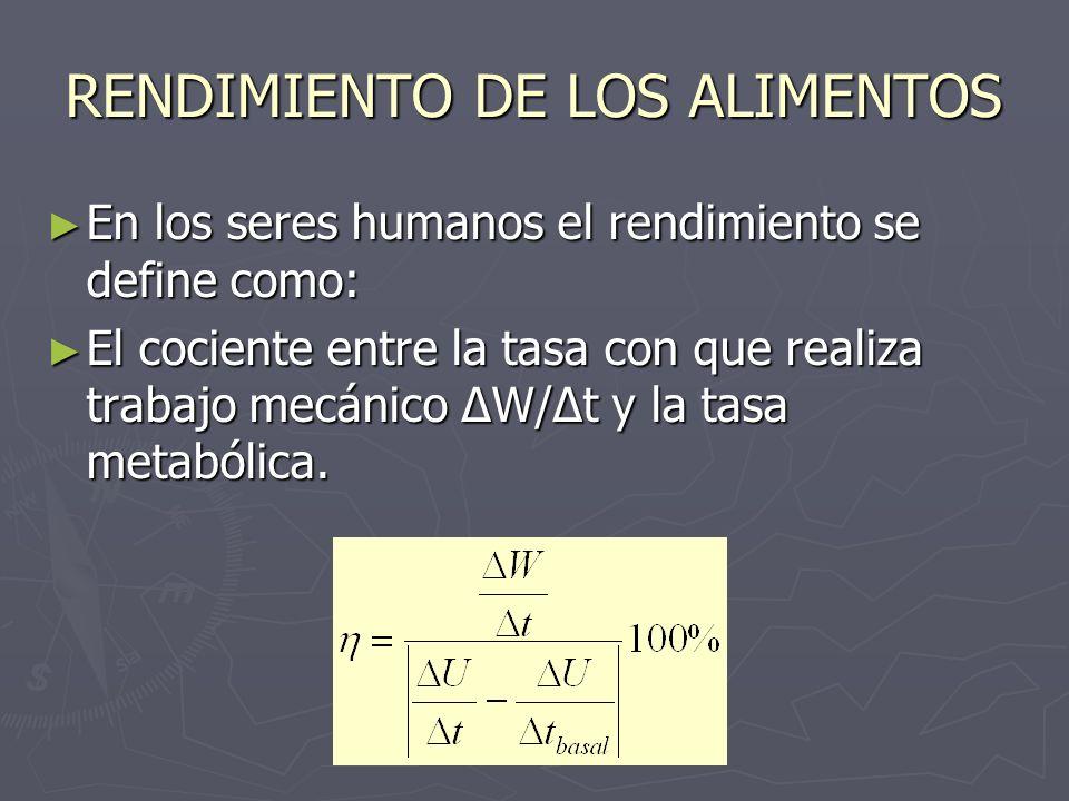 RENDIMIENTO DE LOS ALIMENTOS En los seres humanos el rendimiento se define como: En los seres humanos el rendimiento se define como: El cociente entre