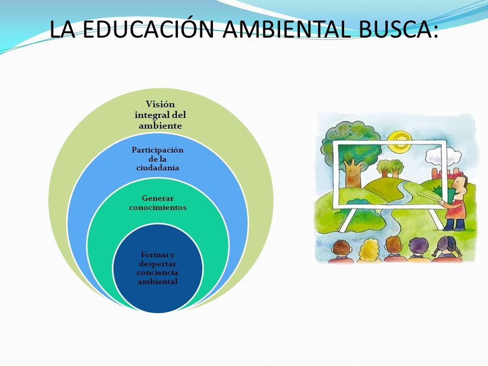 LA EDUCACIÓN AMBIENTAL BUSCA: Visión integral del ambiente Participación de la ciudadanía Generar conocimientos Formar y despertar conciencia ambienta