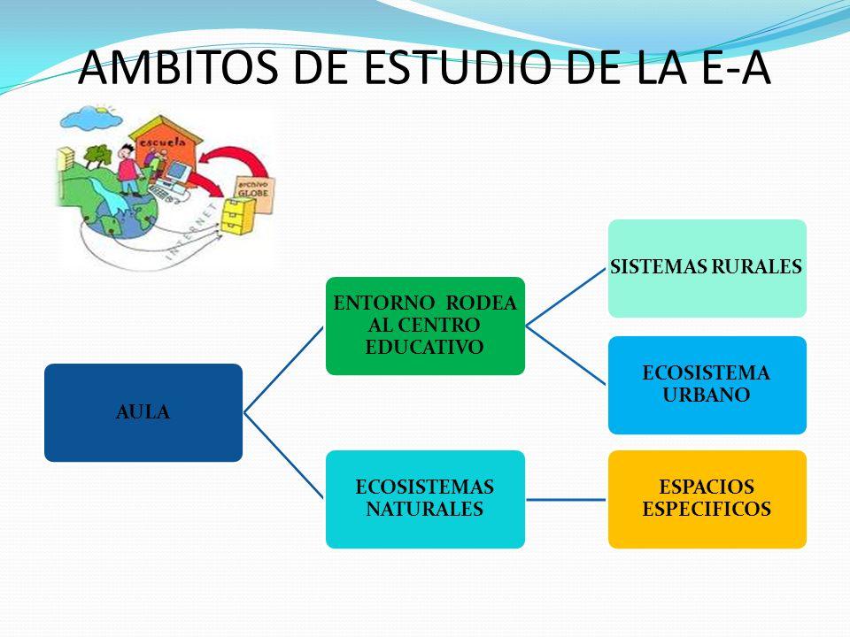AMBITOS DE ESTUDIO DE LA E-A AULA ENTORNO RODEA AL CENTRO EDUCATIVO SISTEMAS RURALES ECOSISTEMA URBANO ECOSISTEMAS NATURALES ESPACIOS ESPECIFICOS