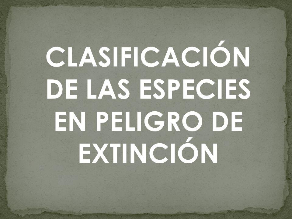 1.ESPECIES EN PELIGRO DE EXTINCIÓN.
