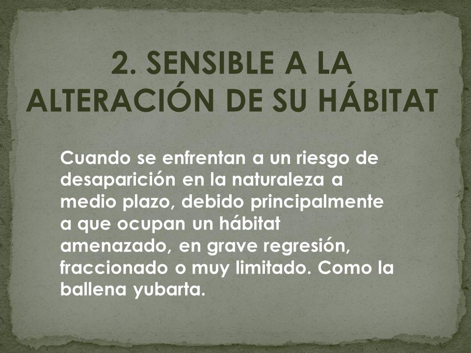 2. SENSIBLE A LA ALTERACIÓN DE SU HÁBITAT Cuando se enfrentan a un riesgo de desaparición en la naturaleza a medio plazo, debido principalmente a que