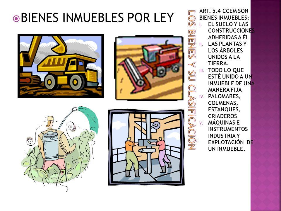 ART. 5.4 CCEM SON BIENES INMUEBLES: I. EL SUELO Y LAS CONSTRUCCIONES ADHERIDAS A ÉL II. LAS PLANTAS Y LOS ÁRBOLES UNIDOS A LA TIERRA. III. TODO LO QUE