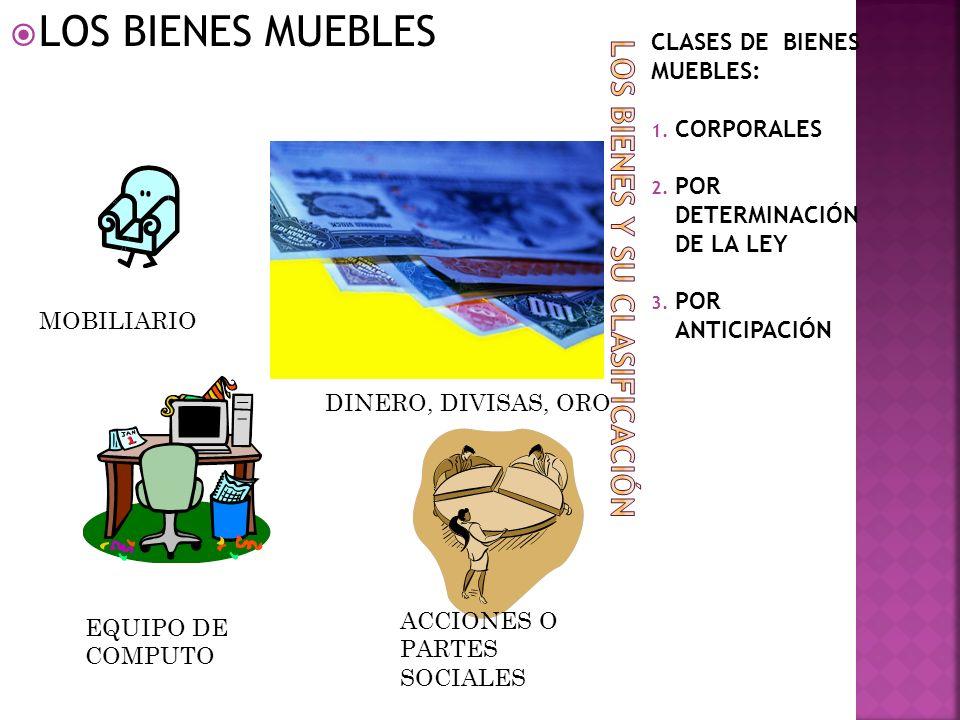 CLASES DE BIENES MUEBLES: 1. CORPORALES 2. POR DETERMINACIÓN DE LA LEY 3. POR ANTICIPACIÓN LOS BIENES MUEBLES MOBILIARIO EQUIPO DE COMPUTO ACCIONES O