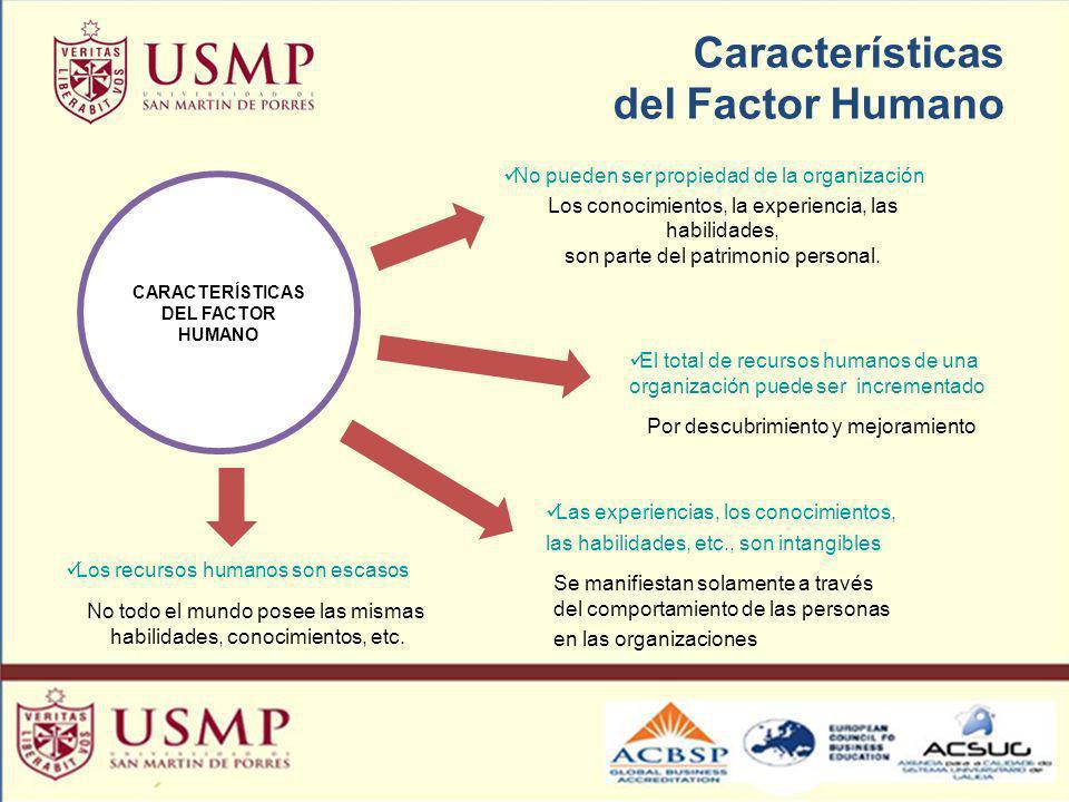 Características del Factor Humano CARACTERÍSTICAS DEL FACTOR HUMANO No pueden ser propiedad de la organización Los conocimientos, la experiencia, las