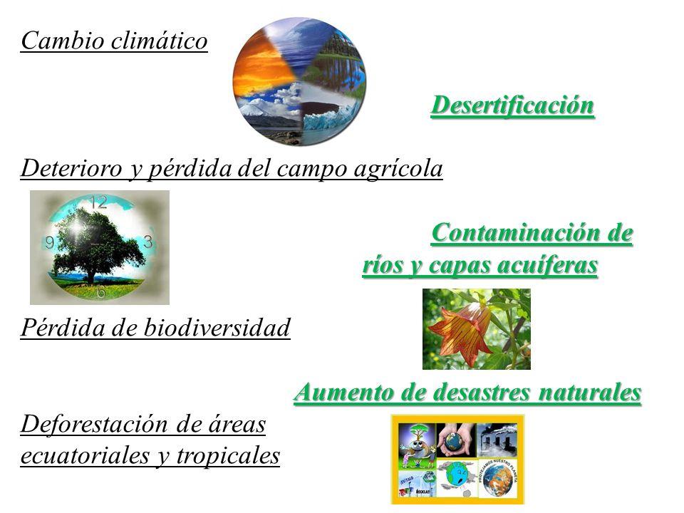 Cambio climáticoDesertificación Deterioro y pérdida del campo agrícola Contaminación de ríos y capas acuíferas Pérdida de biodiversidad Aumento de des