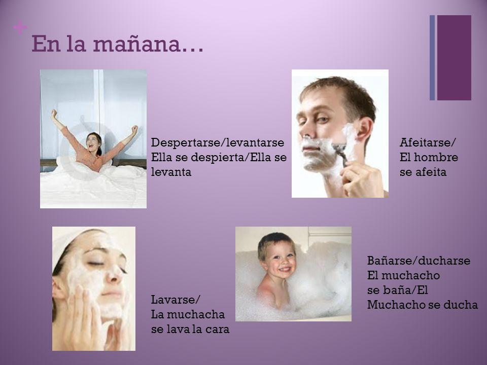 + En la mañana… Despertarse/levantarse Ella se despierta/Ella se levanta Lavarse/ La muchacha se lava la cara Afeitarse/ El hombre se afeita Bañarse/d