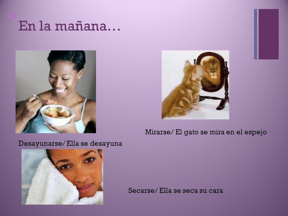 + En la mañana… Desayunarse/ Ella se desayuna Mirarse/ El gato se mira en el espejo Secarse/ Ella se seca su cara