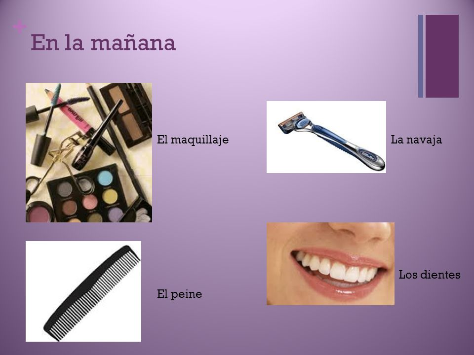 + En la mañana El maquillaje El peine La navaja Los dientes