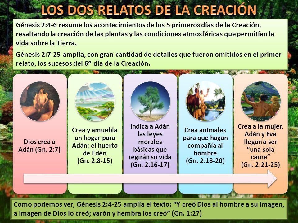 Génesis 2:4-6 resume los acontecimientos de los 5 primeros días de la Creación, resaltando la creación de las plantas y las condiciones atmosféricas q