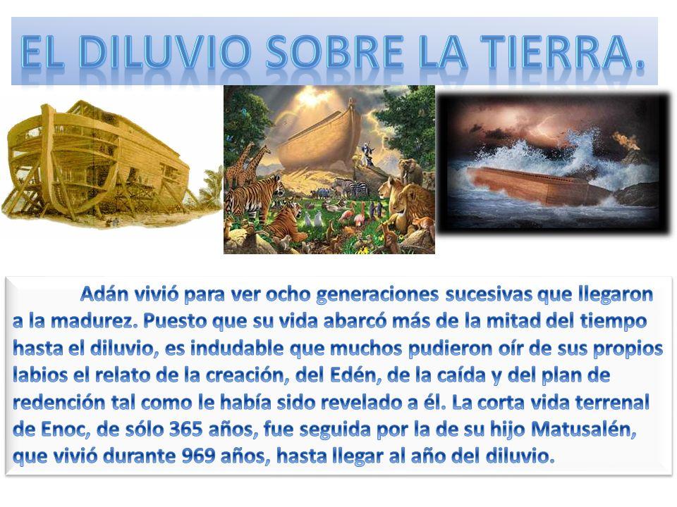 Dios dio a Noé las dimensiones exactas del arca, y explícitas instrucciones acerca de todos los detalles de su construcción.