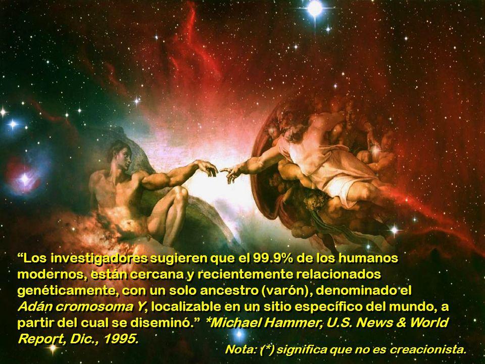 En ausencia de los eslabones perdidos, y argumentando en contra de las relaciones con sus ancestros, y por lo tanto en contra de la evolución de los h