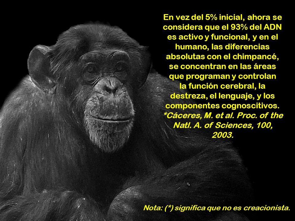 El genoma del humano se completó en 2003; y el del chimpancé, en 2005. Aunque éste es diferente (44 cromosomas, y 12% mayor que el humano), un análisi