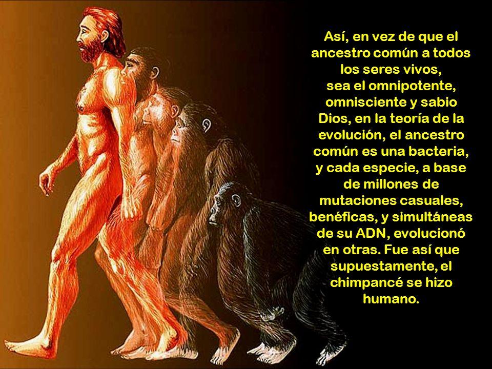Las teorías asociadas con la evolución, enseñan que la nada, un día espontáneamente, se convirtió en materia, y que las moléculas inertes, por sucesos