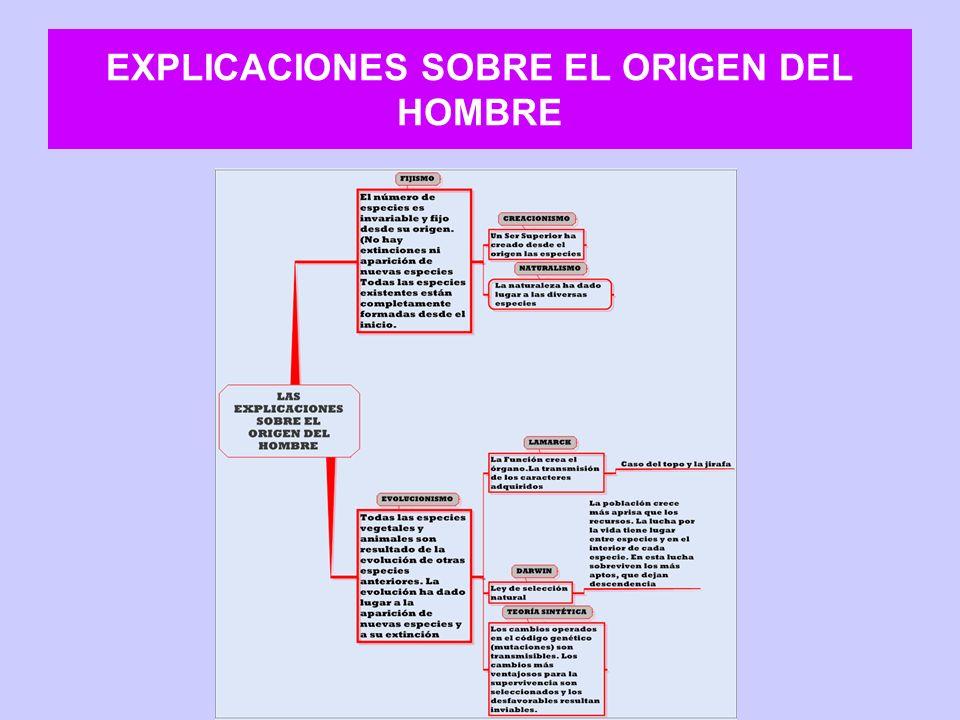 EXPLICACIONES SOBRE EL ORIGEN DEL HOMBRE