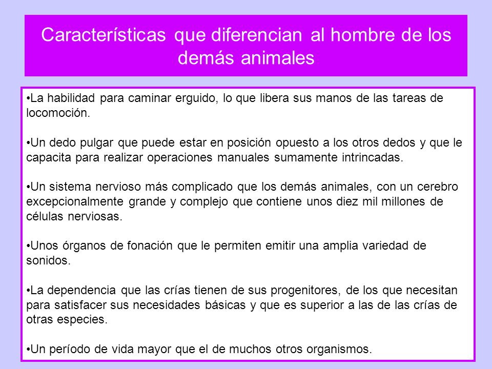 Características que diferencian al hombre de los demás animales La habilidad para caminar erguido, lo que libera sus manos de las tareas de locomoción