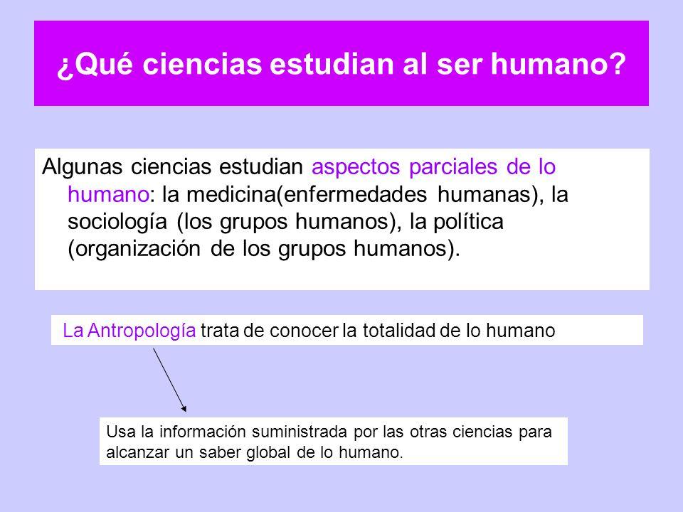 ¿Qué ciencias estudian al ser humano? Algunas ciencias estudian aspectos parciales de lo humano: la medicina(enfermedades humanas), la sociología (los