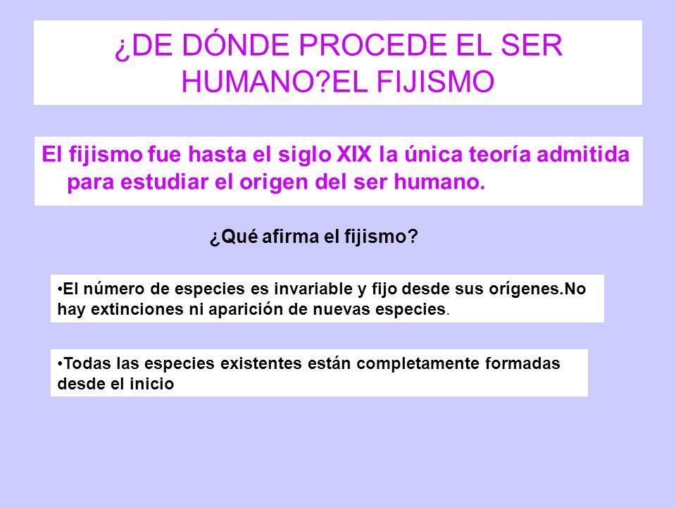¿DE DÓNDE PROCEDE EL SER HUMANO?EL FIJISMO El fijismo fue hasta el siglo XIX la única teoría admitida para estudiar el origen del ser humano. ¿Qué afi