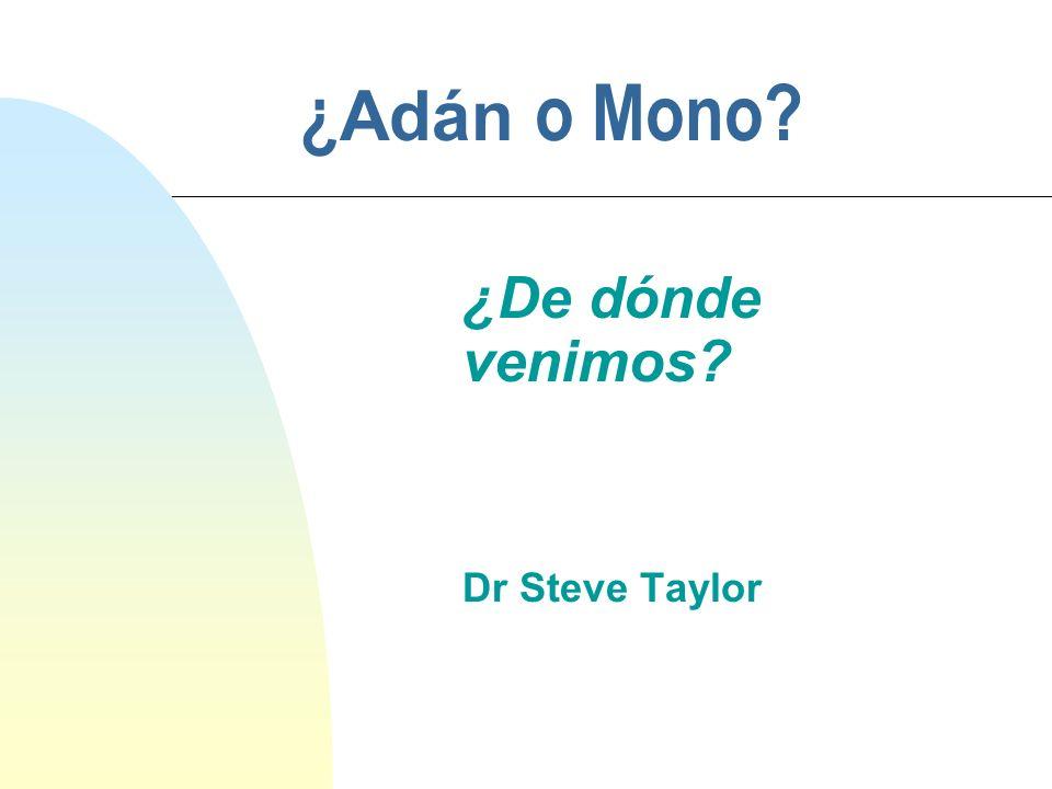 ¿ Adán o Mono? ¿De dónde venimos? Dr Steve Taylor