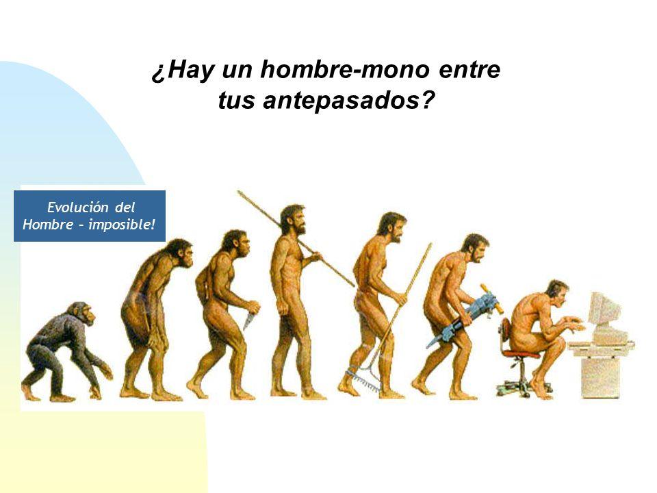 ¿Hay un hombre-mono entre tus antepasados? Evolución del Hombre – imposible!